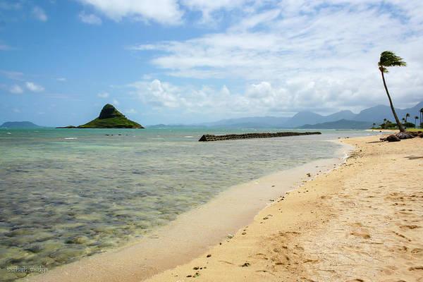 Mokolii Photograph - Chinaman's Hat, Hawaii by Aashish Vaidya