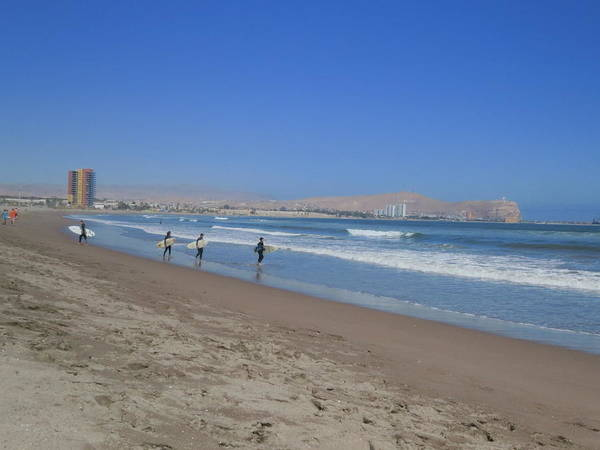 Arica Photograph - Chinchorro Beach  by Surfing Arica
