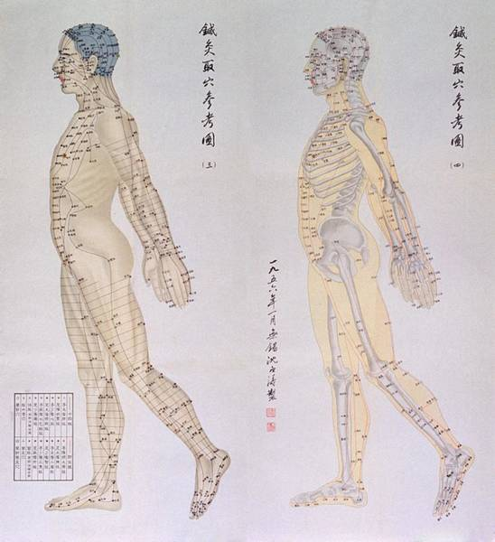 East Point Photograph - Chinese Chart Of Acupuncture Points by Everett