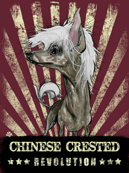 Chinese Drawing - Chinese Crested Revolution by John LaFree