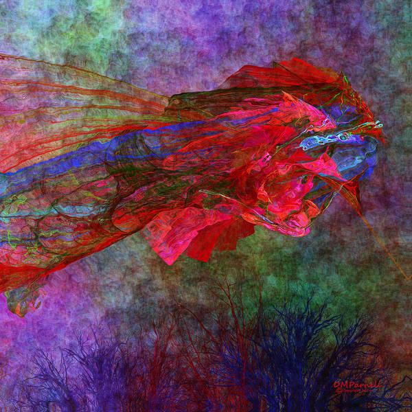 Fractal Landscape Digital Art - Chinese Kite by Diane Parnell