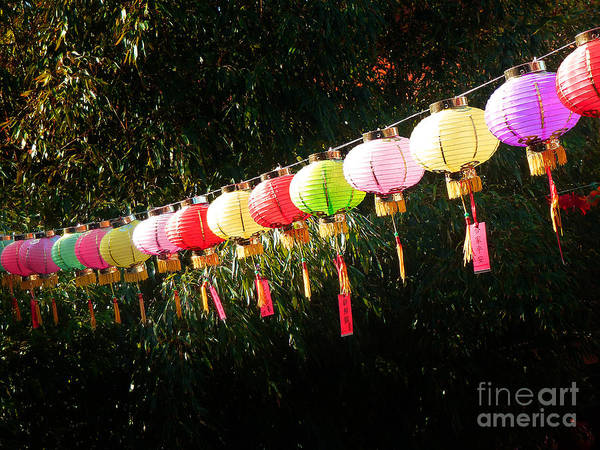 Photograph - Chinese Lanterns 8 by Xueling Zou