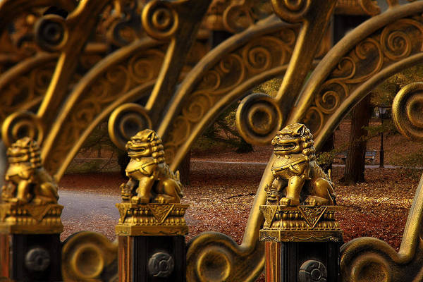 Photograph - Chinese Lions - Luck Prosperity Power Grandeur by Christine Till