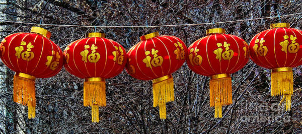 Photograph - Chinese New Year Lanterns by Lita Kelley