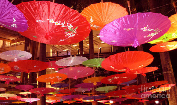 Photograph - Chinese Umbrella As Canopy by Christopher Shellhammer