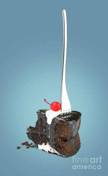Souse Photograph - Chocolate Cake With Fork by Kira Yan