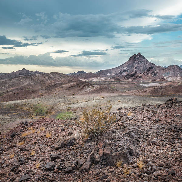 Photograph - Chocolate Mountains - Hardscape by Alexander Kunz