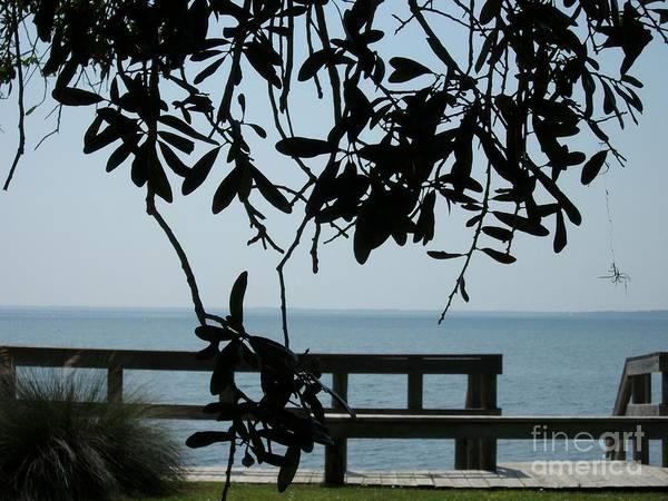 Photograph - Choctaw Beach by Tammie J Jordan