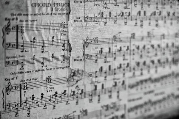 Photograph - Chord Progression by Rick Berk