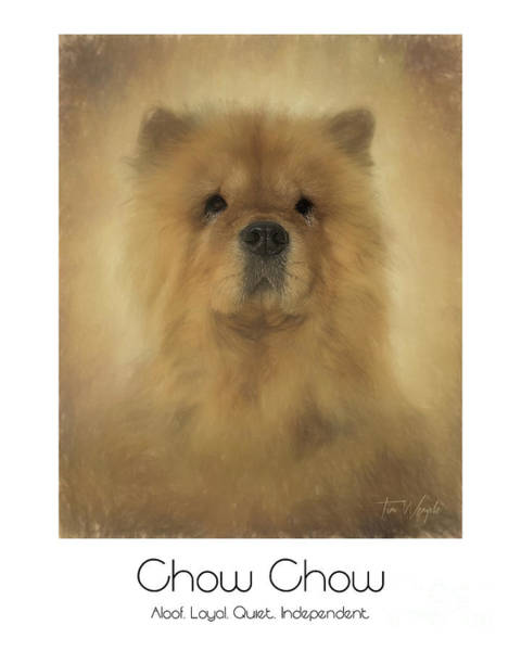Digital Art - Chow Chow Poster by Tim Wemple
