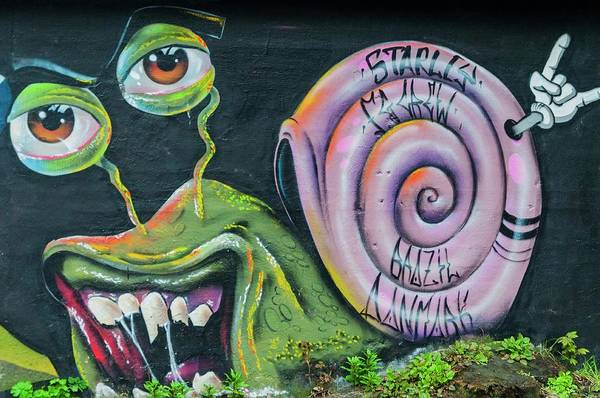 Photograph - Christiania Mural by Rob Hemphill