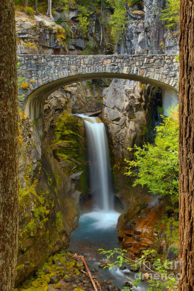 Photograph - Christine Falls Through The Trees by Adam Jewell