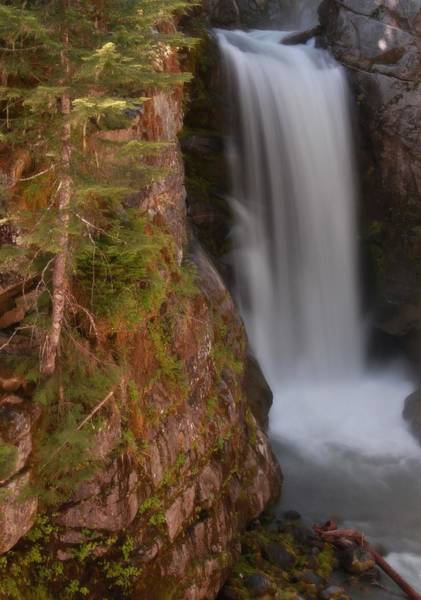 Photograph - Christine Falls Washington by Dan Sproul