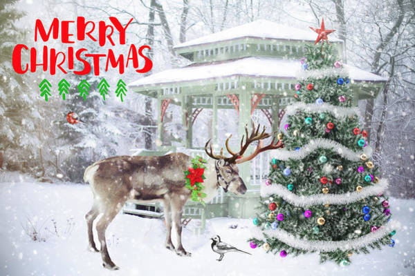 Photograph - Christmas 2016-003 by Ericamaxine Price