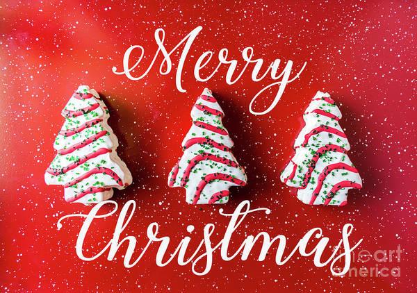 Photograph - Christmas Baking by Andrea Anderegg
