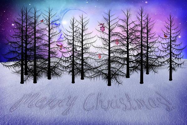 Wall Art - Digital Art - Christmas Bare Trees by Mihaela Pater