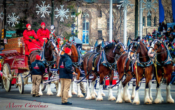 Wagon Wheel Digital Art - Christmas Clydesdales by Optical Playground By MP Ray