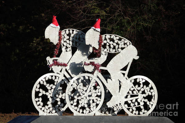 Photograph - Christmas Cycling Dorking Surrey Uk by Julia Gavin