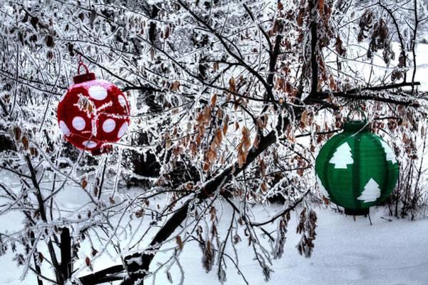 Photograph - Christmas by David Matthews