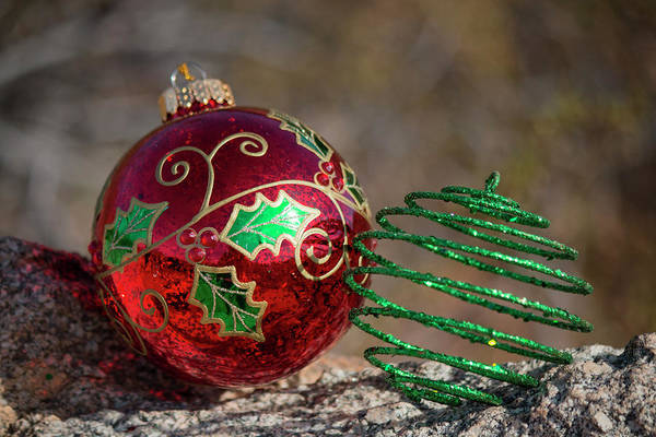 Photograph - Christmas Decorations In The Desert 2 by Teresa Wilson