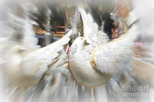 Photograph - Christmas Doves by Jenny Revitz Soper