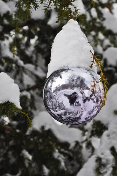 Wall Art - Photograph - Christmas Greetings 3 by Stanislovas Kairys