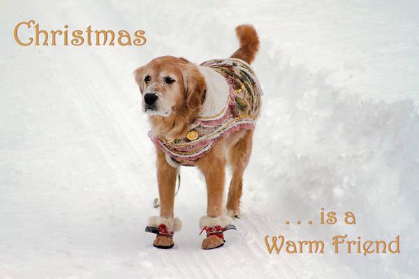 Photograph - Christmas Is A Warm Friend by Bonnie Follett