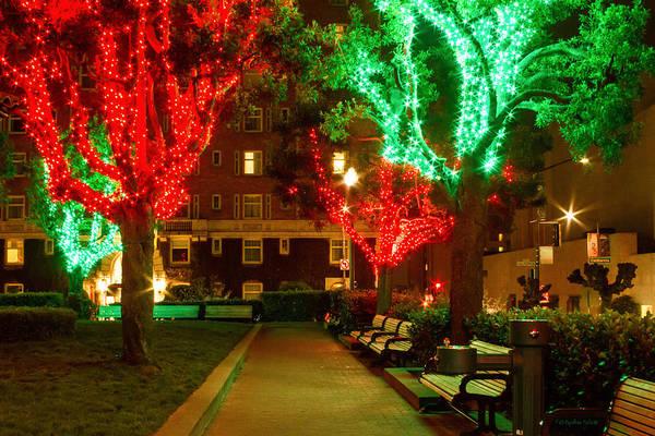 Photograph - Christmas Lights At Huntington Park by Bonnie Follett