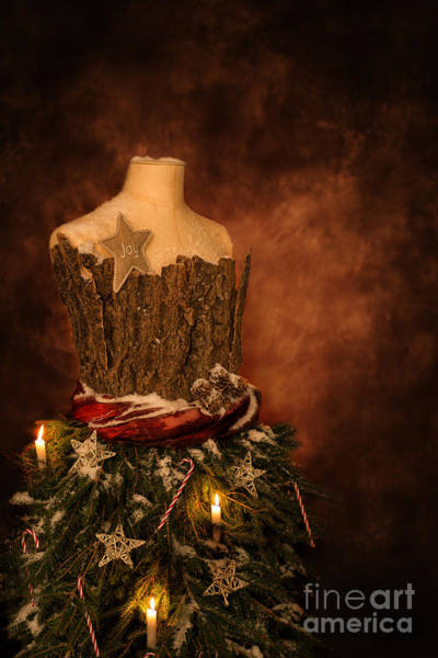 Dress Form Photograph - Christmas Mannequin by Amanda Elwell