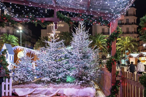 Photograph - Christmas Market, Toulon by Jean Gill