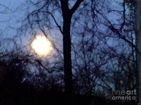 Photograph - Christmas Moon by Karen Adams