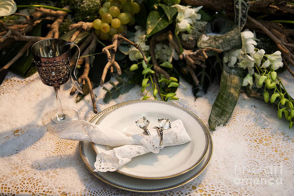 Photograph - Christmas Party  by Ariadna De Raadt
