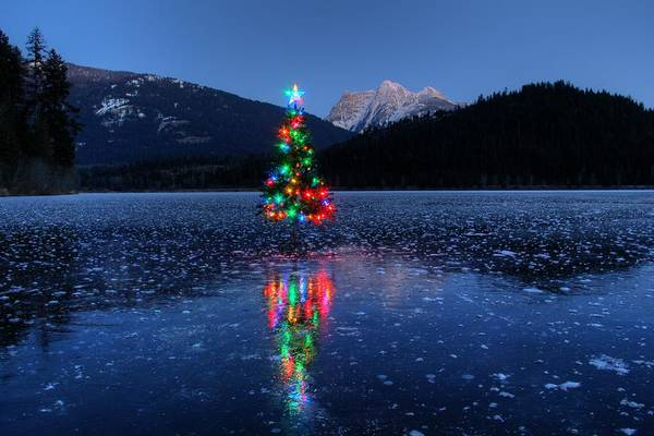 Montana Photograph - Christmas Spirit On Bull Lake by Robert Hosea