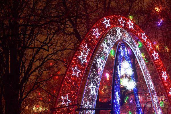 Photograph - Christmas Stars In Vienna by John Rizzuto