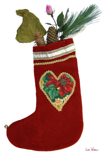 Photograph - Christmas Stocking With Nature Gifts by Lise Winne