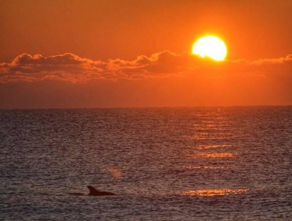 Christmas Sunrise On The Atlantic Ocean Art Print