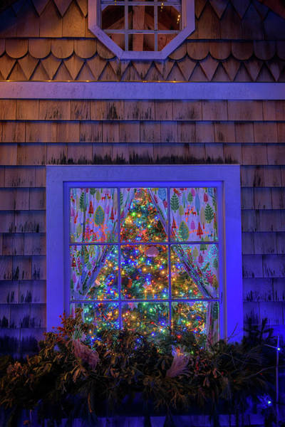 Photograph - Christmas Tree In The Window by Rick Berk