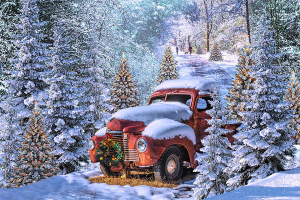 Dog Walker Photograph - Christmas Truck In A Magical Forest Of Lights by Debra and Dave Vanderlaan