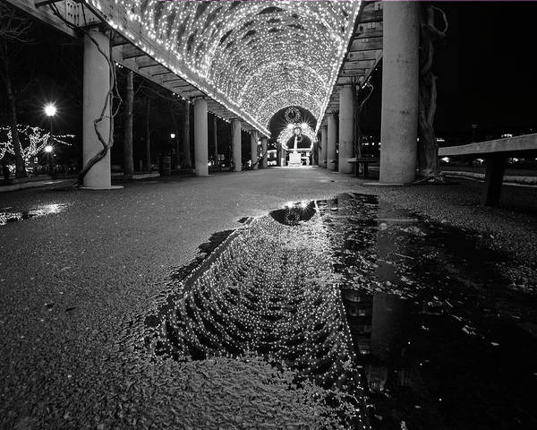 Photograph - Christopher Columbus Trellis Reflection Boston Ma Christmas Black And White by Toby McGuire