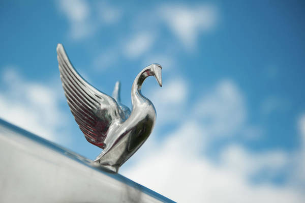 Freightliner Wall Art - Photograph - Chrome Swan by Helen Northcott