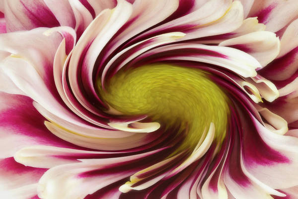Whirlwind Digital Art - Ever Turning Blows The Wind by Jipsi Immanuelle