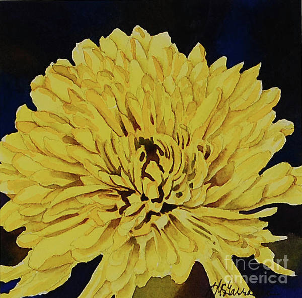 Wall Art - Painting - Chrysanthemum Close-up by Annette McGarrahan