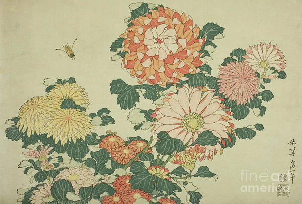 Wall Art - Painting - Chrysanthemums And Bee by Hokusai