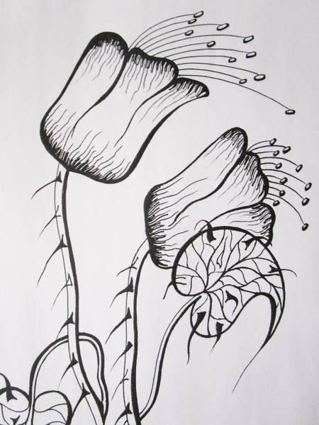 Drawing - Chubby Checker by Rosita Larsson