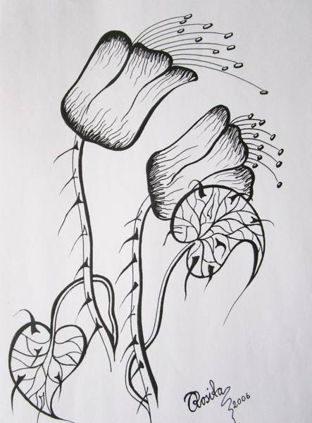 Drawing - Chubby Flowers by Rosita Larsson