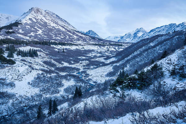 Photograph - Chugach In Winter Twilight by Tim Newton