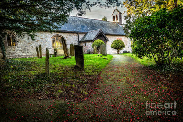 Gravestone Photograph - Church Berries by Adrian Evans