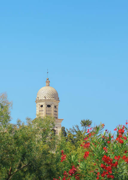 Photograph - Church In Cinque Terre, Italy With Beautiful Roses Foreground by Alexandre Rotenberg