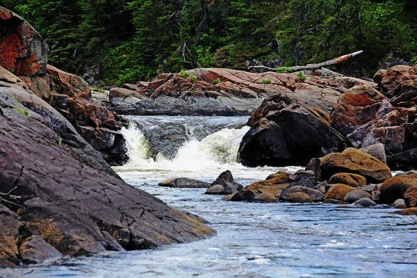 Sturgeon River Photograph - Chutes On The Wanapitei River by Debbie Oppermann