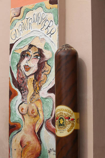 Photograph - Cigar And Nude Woman by Dart and Suze Humeston